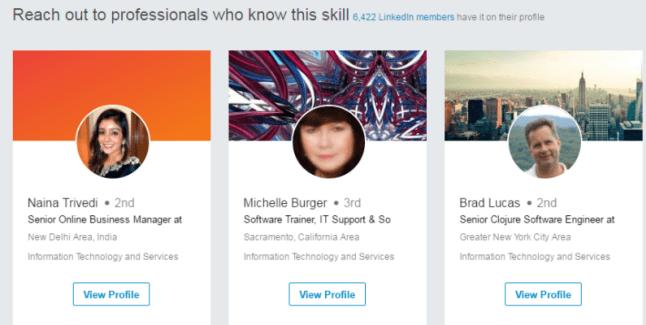 Nania fake professional profile